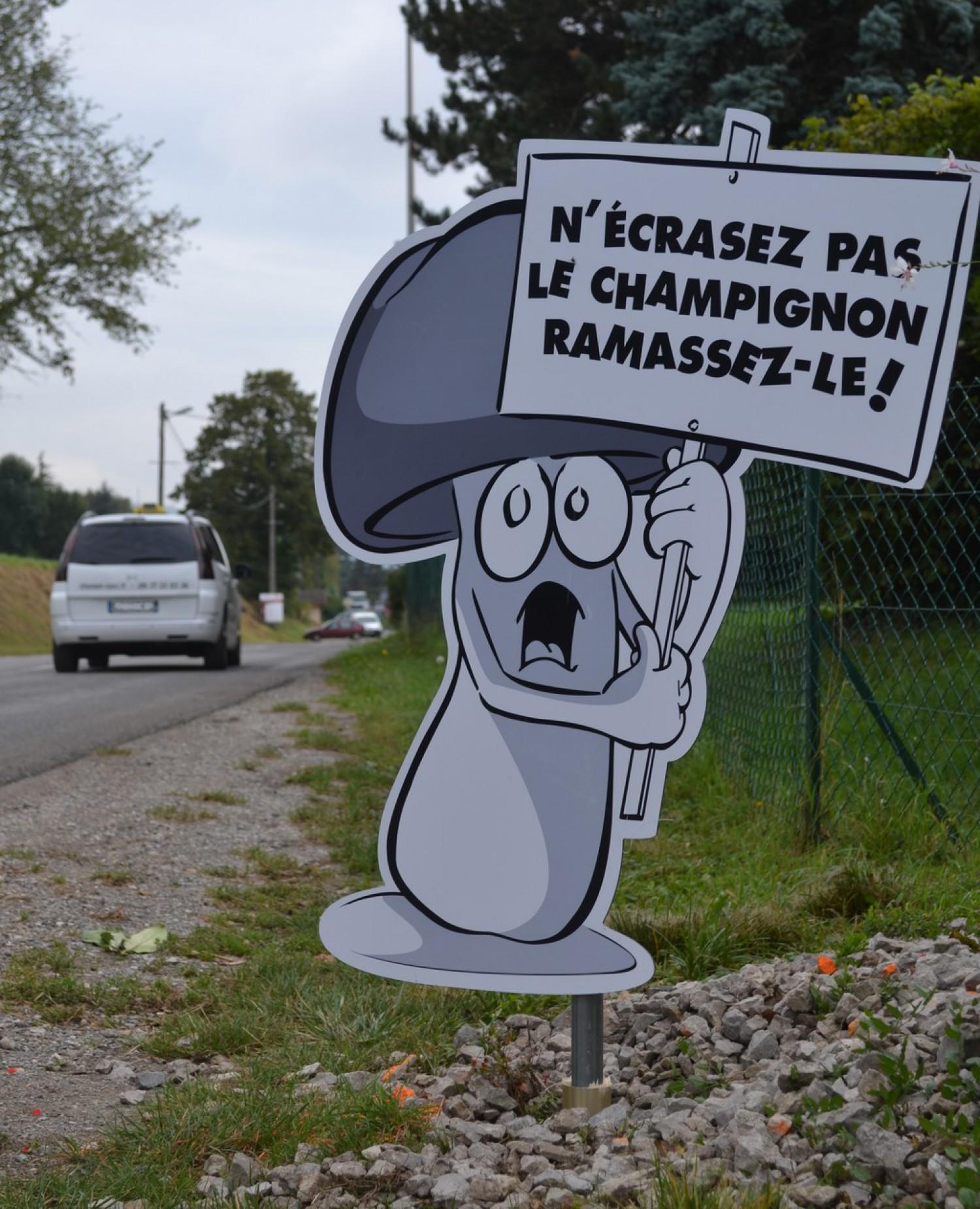 Lutte contre la vitesse – Saint-Cergues – Champignon