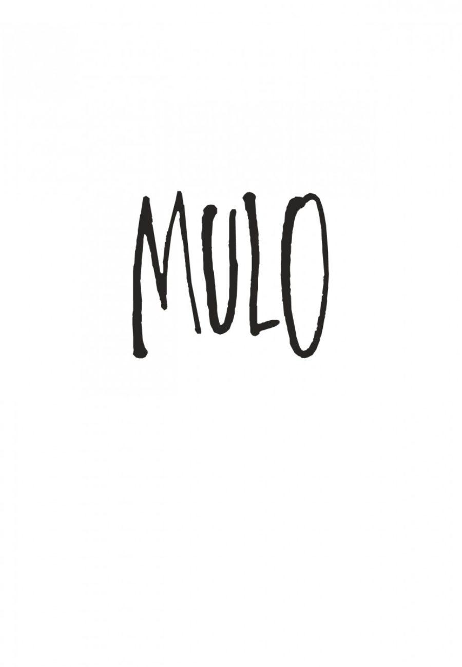 Mulo #1, Crachin Breton, Dargaud, Le Bihan, Pog-titre-1200